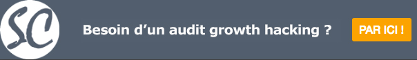 audit growth hacking-cta